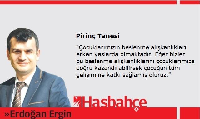 pirinc-tanesi
