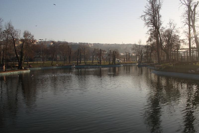 kuğulu göl