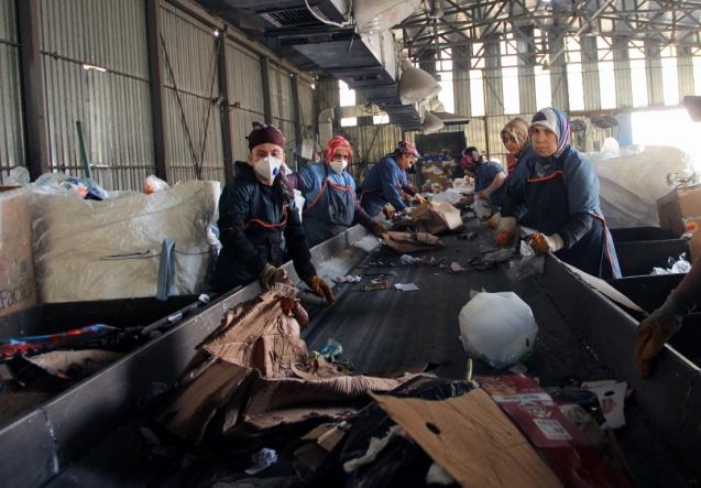 Kağıthane'de 5 Yılda 255 Bin Ağaç Kurtarıldı